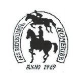 Logoen til Nes Rideklubb
