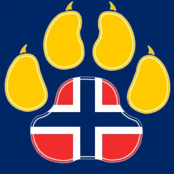 Logoen til Støtt gatehunder i Bosnia