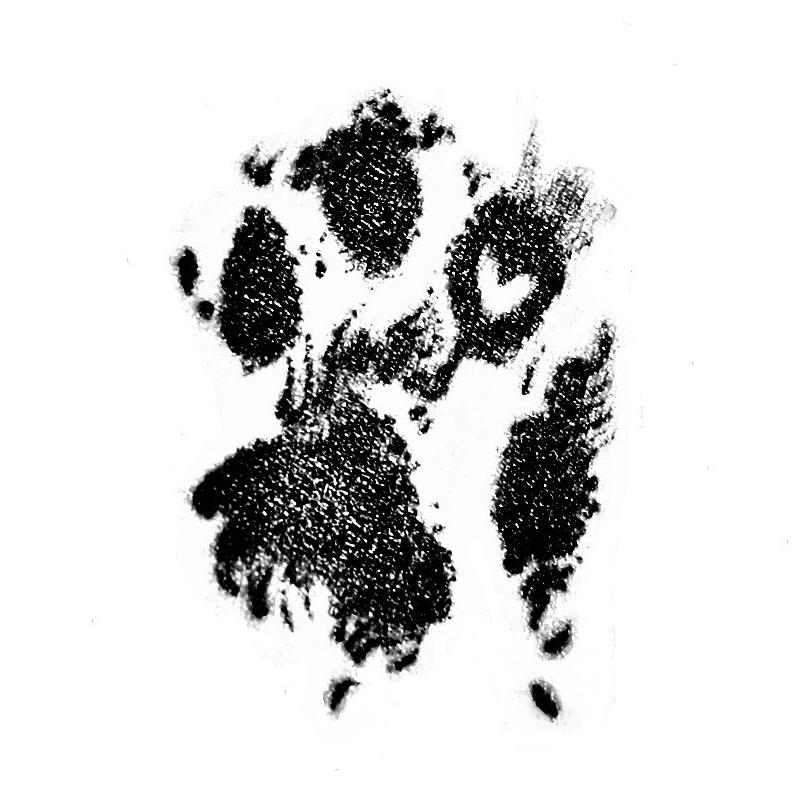 Logoen til Potespor i Hjertet