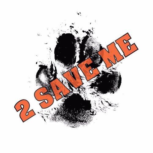 Logoen til 2 SAVE ME